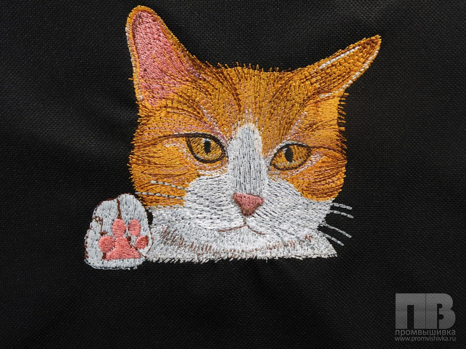 Вышивка пушистого кота