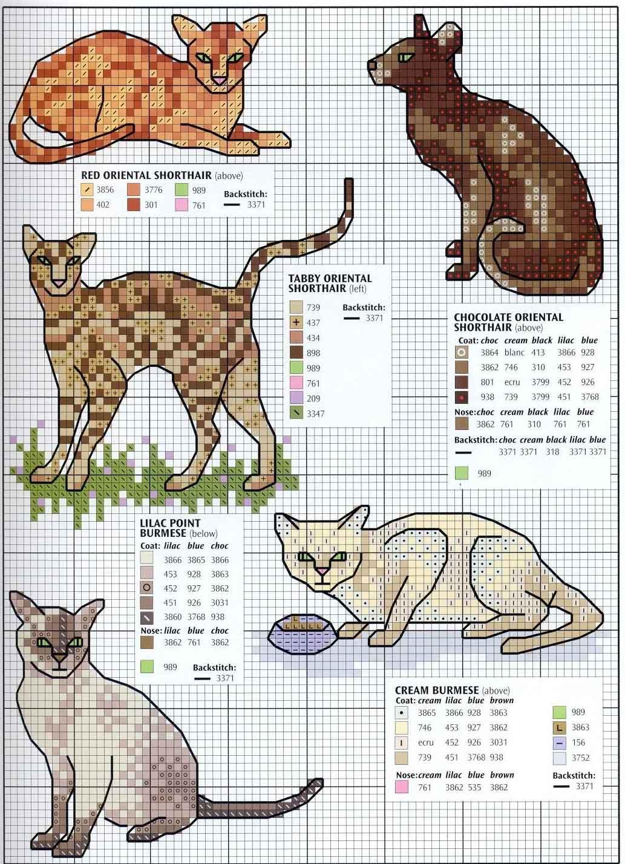 Схемы вышивки котов крестиком