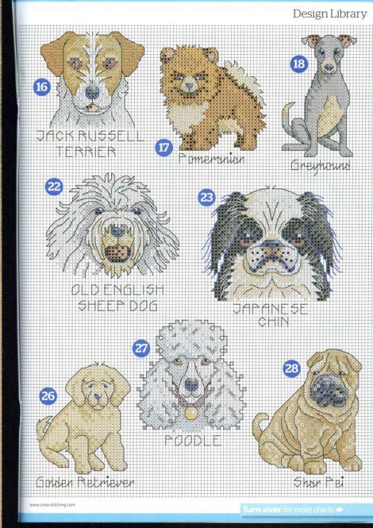 Схемы вышивок и схема цветов котов